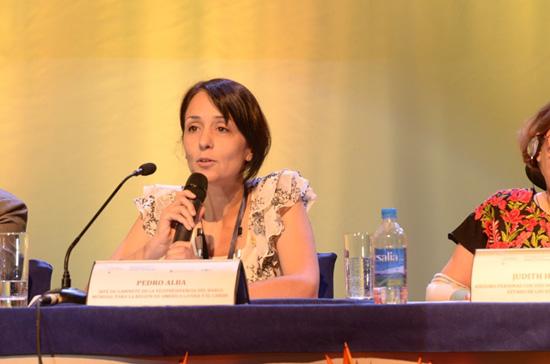 Ana Mohedado, representante de la Organización Iberoamericana de Seguridad Social